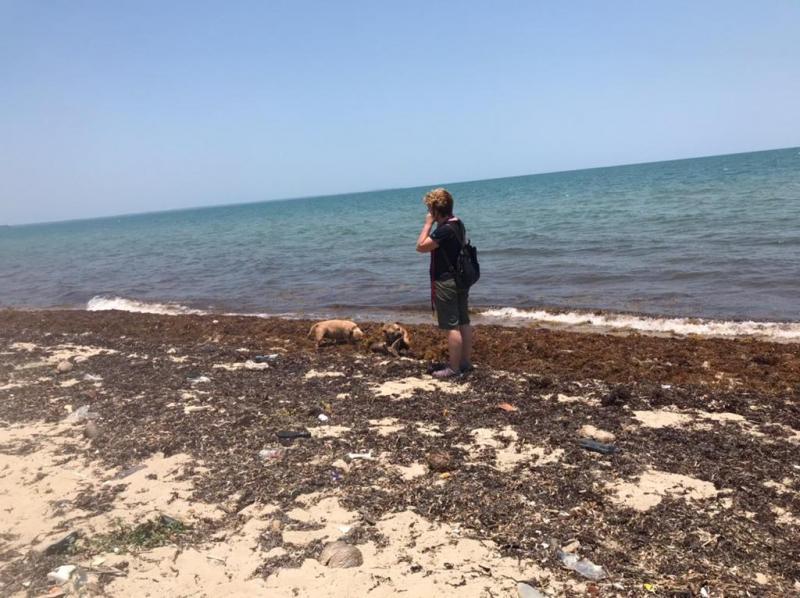 Exploring Belize
